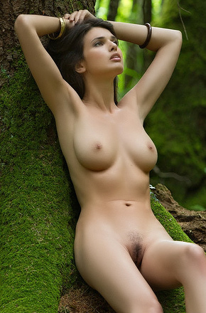 Jasmine In The Forest