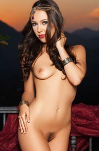 Arabian Jenna Sativa
